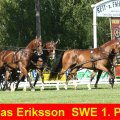 Tomas Erikkson SWE Winner Dressage and CAI-A Altenfelden 2009, Golden Wheel Trophy and Golden Wheel CUP